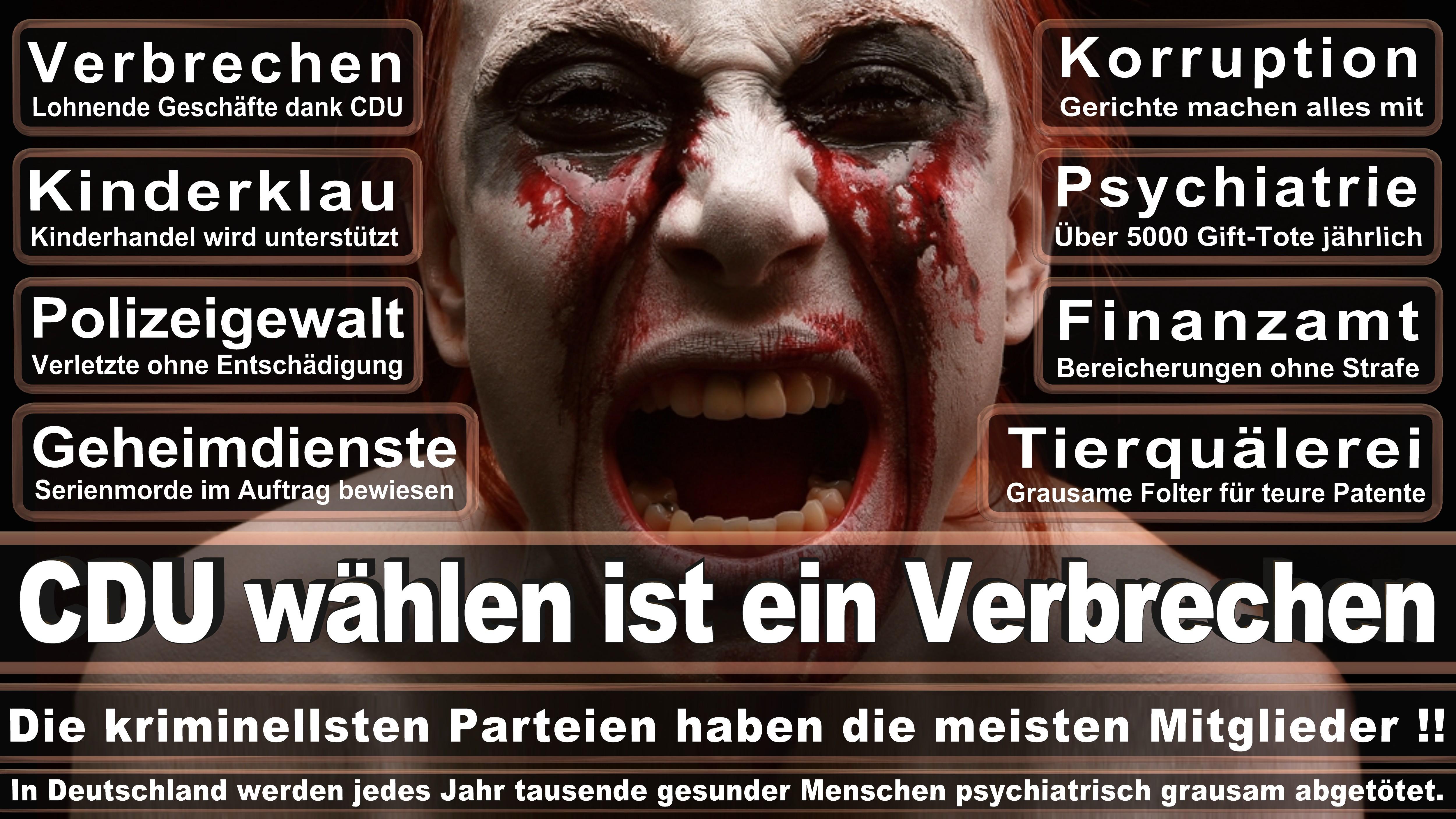 Landtagswahl, Schleswig-Holstein, 2017, CDU, SPD, Wahlplakat, Wahlplakate, Stimmzettel, Umfrage, Prognose, Termin, Kandidaten, Frauke Petry, AfD, Angela Merkel
